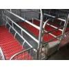 淮北母猪产床市场价:母猪定位栏价格